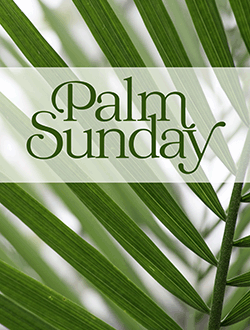 March 28 Sunday Worship Video & Bulletin